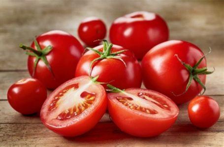 گوجه فرنگی میوه لعنتی
