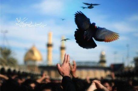 مقام والای زائر اباعبدالله الحسین(ع)